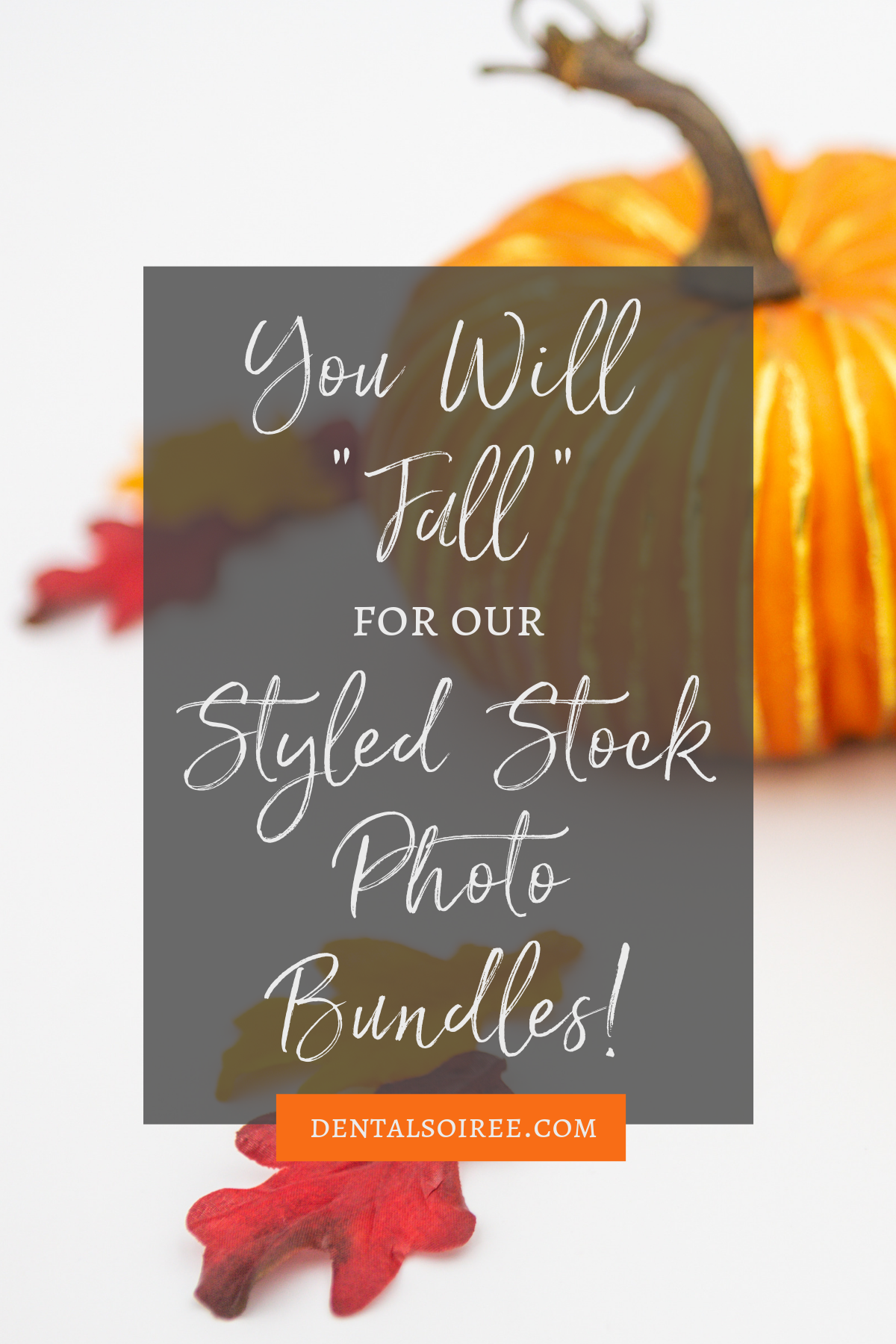 "You Will ""Fall"" for Our Stock Photo Bundles"